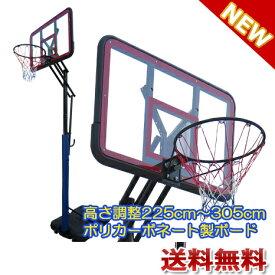 【エコーフィット】高級ポリカーボネート製バスケットゴール ポールガード付き ミニバスから公式まで対応 EC-9300【送料無料】【商品代引き不可】