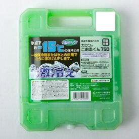 ガツンとこおるくん ハードタイプ (1000) キャンプ 保冷剤