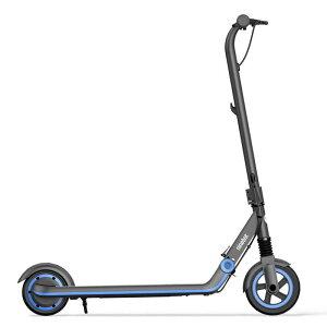 セグウェイ ナインボット キックスクーター Ninebot eKickScooter ZING E10