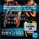 【100個限定!30%OFF★3/27〜】【送料無料】アルプロン カゼイン100 2kg カゼイン プロテイン ダイエット・健康