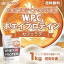 [送料無料&10%OFFクーポン]アルプロン WPC ホエイプロテイン100 カフェラテ 1kg(約50食) | 正規品 ALPRON プロテイ…