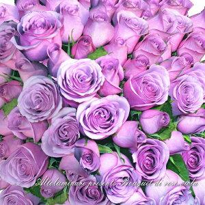 【アメジスト】パープルのバラ100本のブーケ(紫のバラの花束)【楽ギフ_包装】【楽ギフ_メッセ入力】【楽ギフ_名入れ】【お誕生日祝い 入学祝い 出産内祝い 快気祝い 出産祝い 送料込】