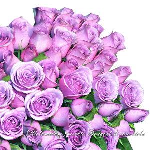 【アメジスト】パープルのバラ50本のブーケ(紫のバラの花束)【楽ギフ_包装】【楽ギフ_メッセ入力】【楽ギフ_名入れ】【お誕生日祝い 入学祝い 出産内祝い 快気祝い 出産祝い 送料込】【