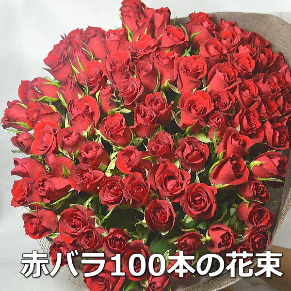 【送料無料】16時まであす楽OK!赤バラ 100本 花束 プロポーズ108本可 花ギフト バラ 赤薔薇 赤バラ バラの花束 薔薇の花束 ローズ レッド 花束 ブーケ お誕生日 プレゼント 贈り物 記念日 結婚記念日 サプライズ 祝い花 お祝い 御祝い おしゃれ