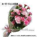 遅れてごめんね。母の日【送料無料】数量限定♪とってもかわいいピンクのカーネーションの花束【あす楽対応】【あす楽…