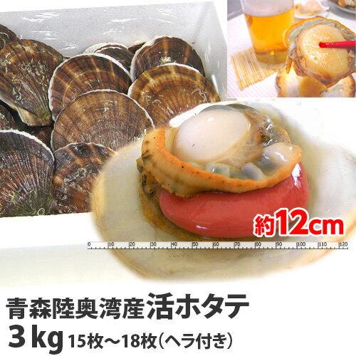 青森むつ湾産 活ホタテ3kg 15〜18枚入 【代引不可】