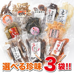 選べる珍味 福袋セット♪ おつまみ 珍味3袋 大人気珍味 11種類から3個 選べる珍味 送料無料 福袋 珍味セット 3個セット