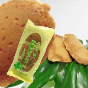 西郷松せんべい9枚【お菓子】【お茶請け】【シイの実】