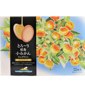 とろ〜り桜島小みかんラングドシャ(12個入)【鹿児島土産】【ギフト】