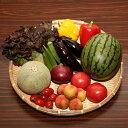 季節の野菜とフルーツセット