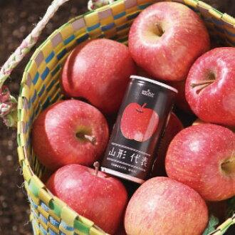 山形代表苹果汁190g