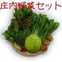 庄内の野菜セット(季節の商品5〜8種類詰合せて発送します※お野菜の指定はできません)