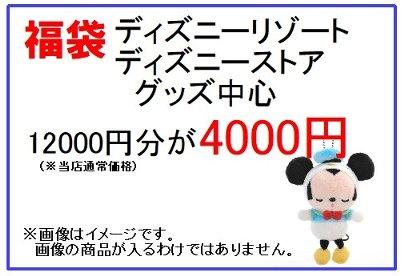 福袋 ディズニー リゾートストアグッズ中心 12000円分が4000円