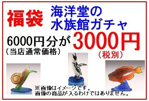 福袋 海洋堂の水族館ガチャ 6000円分が3000円(税別)