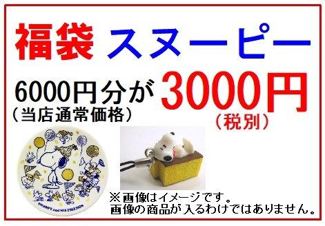 福袋 スヌーピー 6000円分が3000円(税別)