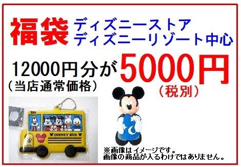 福袋 ディズニーストアとリゾート中心 12000円分が5000円(税別)