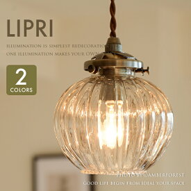 【Lipri】 リプリ ペンダントランプ 天井照明 1灯タイプ ダイニング カウンター テーブル カフェ バー 食卓 店舗 ダクトレール 組み合わせ