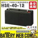 HSE-40-12 日立化成 日本製 産業 用 バッテリー HSEシリーズ 制御弁式据置鉛蓄電池 通信設備 消防用設備 UPS 自家発電始動用 受変電設…