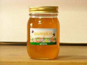 アカシアのようなあっさり風味!かぼちゃはちみつ500g入り(pumpkin)