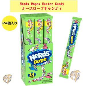 ナーズロープキャンディ Nerds Ropes Easter Candy ロープグミ ハロウィン ロープグミ NerdsRopeキャンディ ロープキャンディまとめ買い イースター クリスマス ハロウィーン 誕生日 プ
