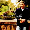 [郵件班次郵費免費]AARON NEVILLE/GOSPEL ROOTS(進口盤CD)(Aaron Neville)