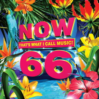 VA/Now That's What I Call Music 66(进口盘CD)