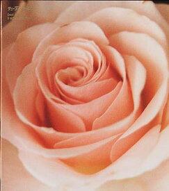 【国内盤CD】サニーデイ・サービス / Best Flower -B side collection-