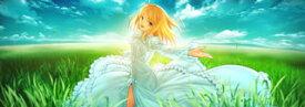 【国内盤CD】「Fate / stay night[Realta Nua]」Soundtrack Reproduction[3枚組]