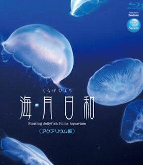 海蜇天气kuragebiyori水族馆篇(蓝光)