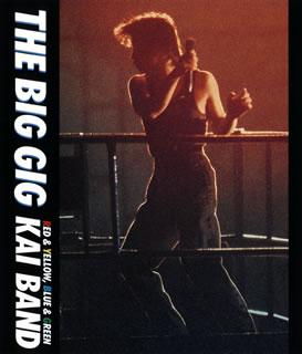 【メール便送料無料】甲斐バンド / THE BIG GIG(ブルーレイ)【BM2017/10/11発売】