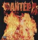 【輸入盤LPレコード】Pantera / Reinventing The Steel (180 Gram Vinyl)(パンテラ)