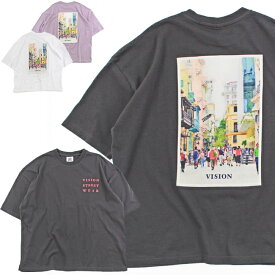 20%OFF VISION STREET WEAR ヴィジョンストリートウェア Tシャツ 半袖 メンズ レディース ユニセックス スポーツ ストリート VS ARTフォト ビッグT 0523111
