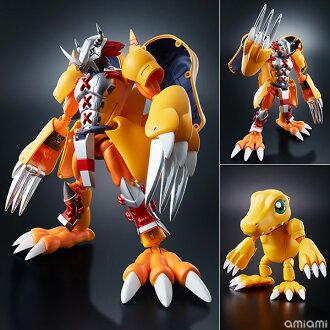 "Digivolving Spirits 01 WarGreymon Kanzen Henkei Figure ""Digimon Adventure""(Released)(超進化魂 01 ウォーグレイモン 完全変形フィギュア 『デジモンアドベンチャー』)"
