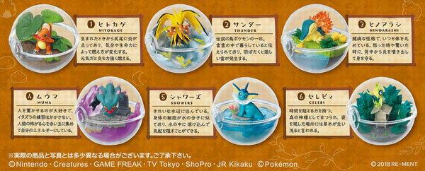 ポケットモンスター テラリウムコレクション3 6個入りBOX (食玩)(再販)[リーメント]《発売済・在庫品》