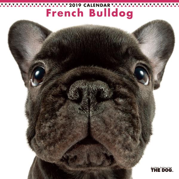 THE DOG カレンダー フレンチブルドッグ (2019年)[アーリスト]《取り寄せ※暫定》