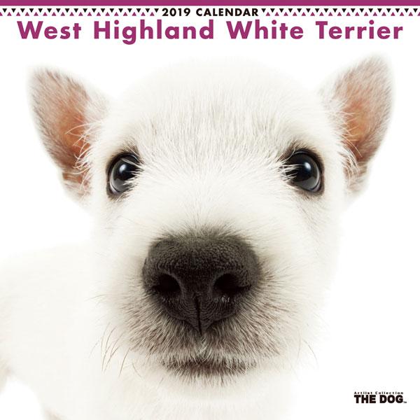 THE DOG カレンダー ウェストハイランドホワイトテリア (2019年)[アーリスト]《発売済・在庫品》