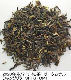 【100g】ネパール紅茶 2020年オータムナル 最高級イラム シャングリラ製茶  無農薬  オーガニック