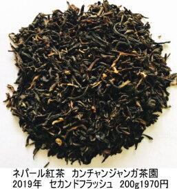 【直送200g】カンチャンジャンガ茶園 ネパール紅茶 2019年セカンドフラッシュ SFTGFOP1 最高級イラム 無農薬 ネパールから直送 サンプル出荷扱い