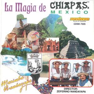 マリンバ・ナンダヤパ 【La Magia de …    CHIAPAS MEXICO】