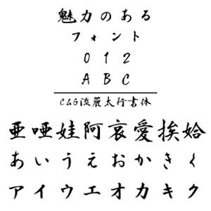 【5分でお届け】C&G流麗太行書体 Windows版TrueTypeフォント【C&G】【ダウンロード版】