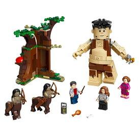 「一緒に魔法の世界を冒険しよう!」レゴ(LEGO) Harry Potter ハリーポッター 禁じられた森 グロウプとアンブリッジの遭遇 75967(21y8m)[次回使えるクーポンプレゼント]