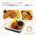 【 ANA's Sky Kitchen 】おうちで旅気分!!ANA国際線エコノミークラス機内食 アジア路線メインディッシュ アジア遊…