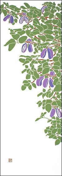 【7月20日販売開始】【2012年新作】手ぬぐい「あけびの実」アケビ/実り/収穫