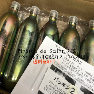 【炭酸ミスト用】ノーラベル炭酸ガスカートリッジ74g×10本