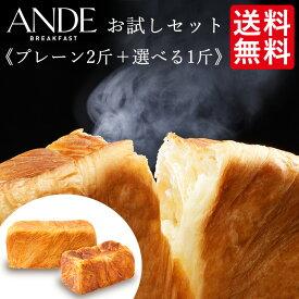 【送料無料】デニッシュ食パン プレーン2斤サイズと1斤サイズ5種のフレーバーから選べる<お試し2本セット>
