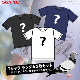 【お買い得セット】STAPLE半袖Tシャツ3枚セット Tシャツ ステイプル ランダムセット あす楽/