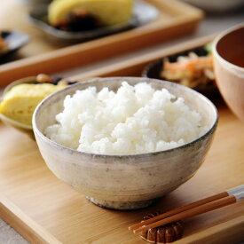 THE 飯茶碗 有田焼/清水焼/信楽焼/瀬戸焼/益子焼