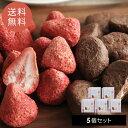 フルーツチョコレート 5個セット ホワイトいちごチョコ チョコバナナ【送料無料】