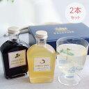 ベジターレ コーディアルシロップ2本セット BOX入(瀬戸内レモン&葡萄カシスジンジャー)