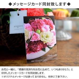 2018母の日のお花Merci選べるギフトセット【送料無料】